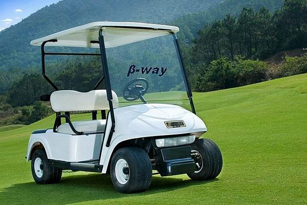 供应电动高尔夫球车 电动观光车 武汉供应