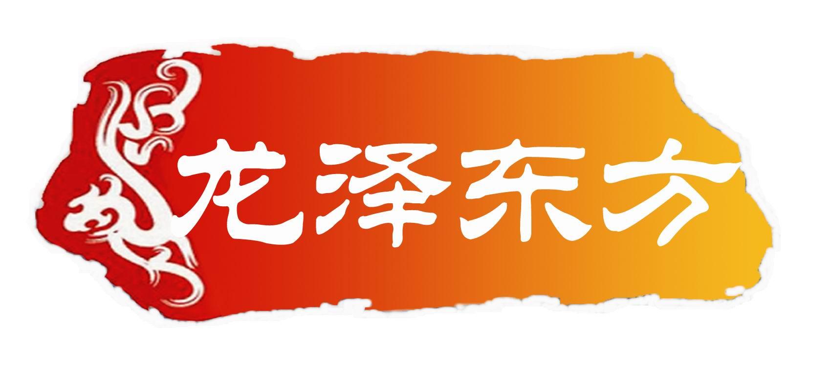 北京龙泽东方经贸有限公司