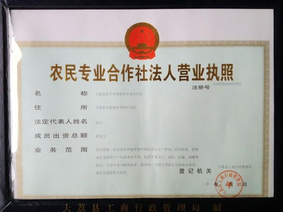 大荔县高升农民苹果专业合作社